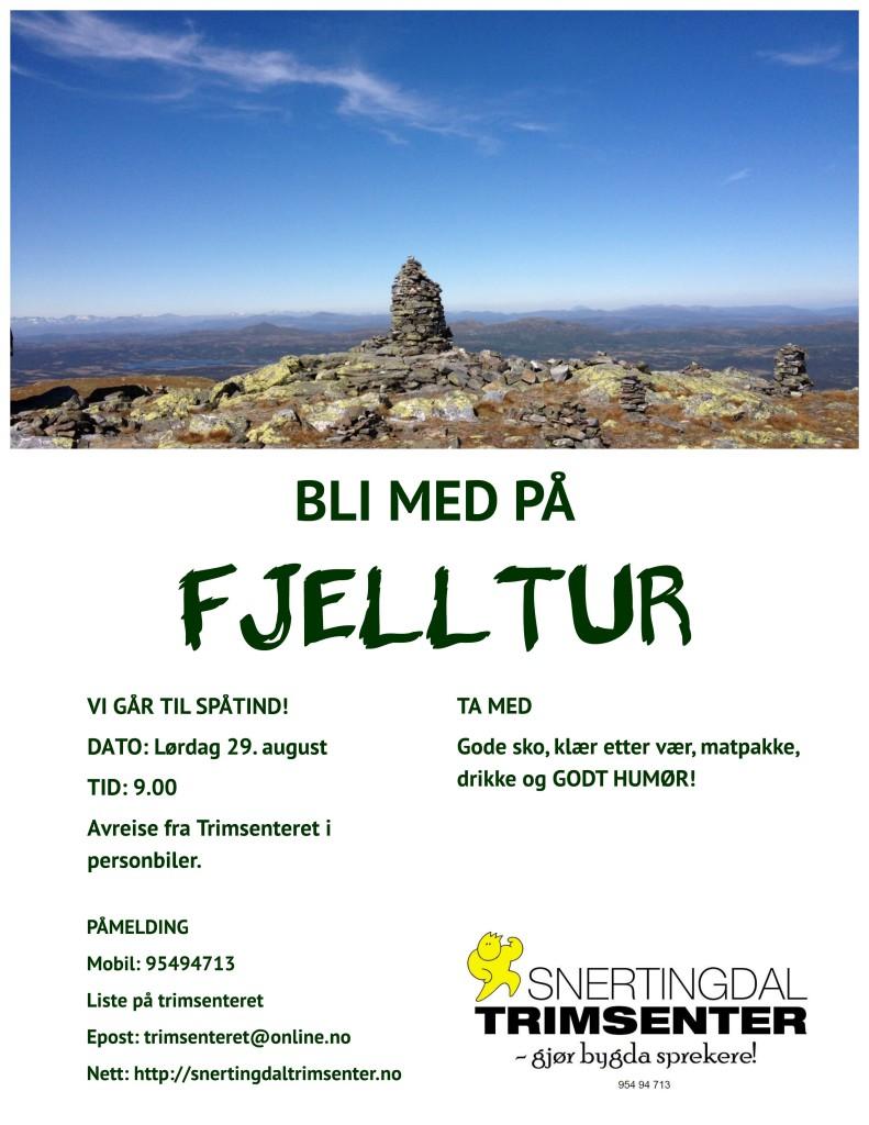 Plakat fjelltur